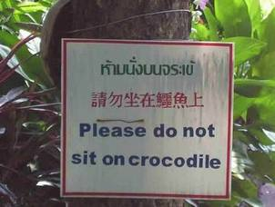 Do Not Sit on the Crocodiles